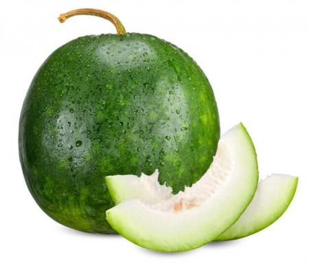 Melone verde invernale l'Ortofruttifero
