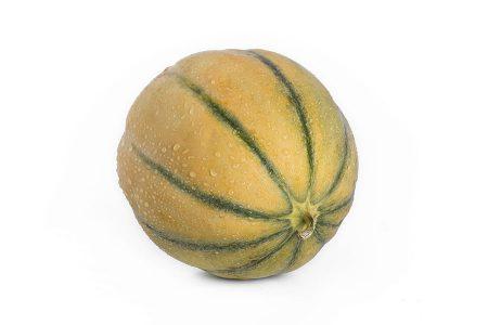 melone-tamaris-liscio