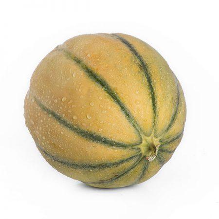 Melone Tamaris Liscio