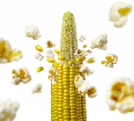 Mais da popcorn l'Ortofruttifero