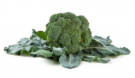 cavolo broccolo Spiridon tardivo l'Ortofruttifero