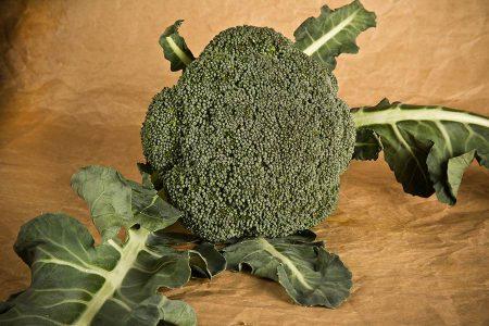 cavolo-broccolo-fellow-2