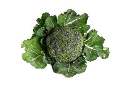 cavolo-broccolo-marathon