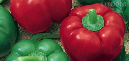 peperone-tropeo-da-ripieno-rosso