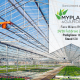 fiera myplant