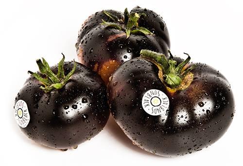 sunblack-pomodoro-nero-giornate-orto