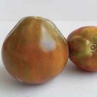 POMODORO GIAPPONESE NERO TRIFELE pomodori di varieta antiche
