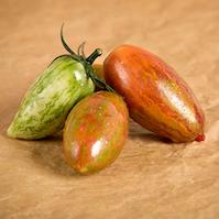 pomodoro super cherry ovale strisce pomodori di varieta antiche