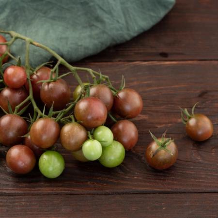 Pomodoro Chocolate Cherry l'Ortofruttifero